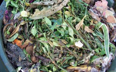 Compost en hergebruik