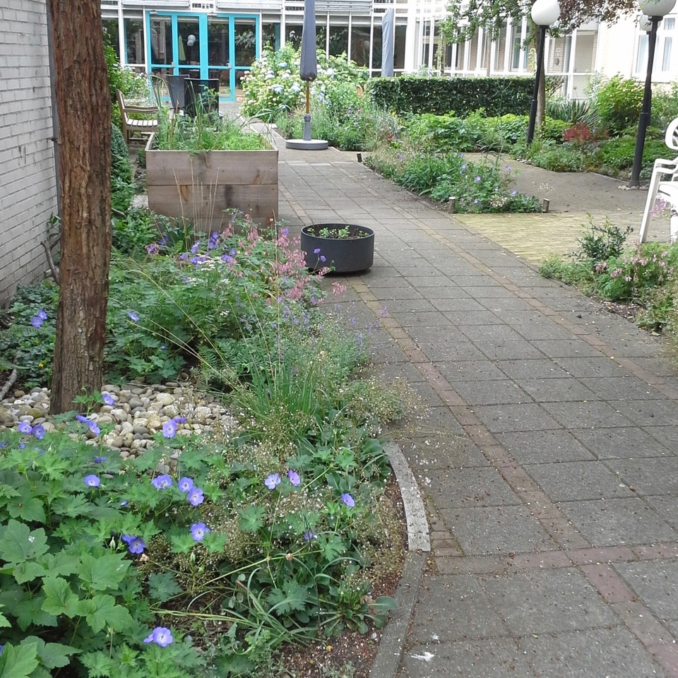 Kruisbeshof open en fleurig